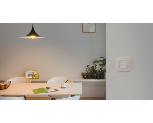 Light Gallery Niko Dim switch pour Philips Hue - Blanc intense