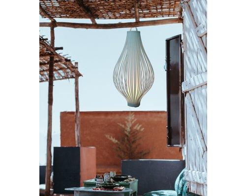 Light Gallery Oignon