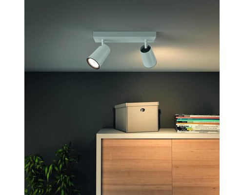 Philips Paisley opbouwspot wit 2-lichts