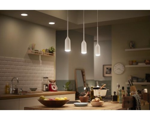 Philips Hue HUE Devote White Ambiance hanglamp LED 1xE27/9,5W 806lm wit + switch