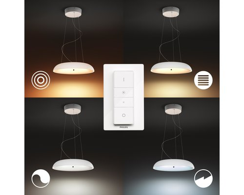 Philips Hue HUE AMAZE BT hanglamp LED 1x33.5W wit