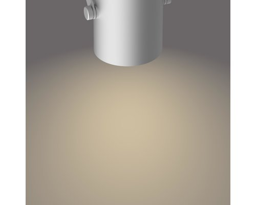 Philips Byre opbouwspot LED 2x4