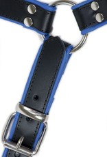 RoB H-Chest Harness mit blauem Piping