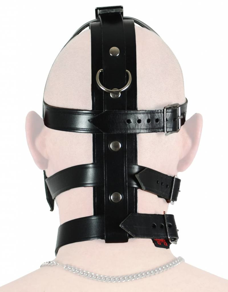 RoB Leather Head Harness