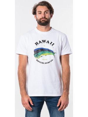 Ripcurl Destination Surf S/S Tee