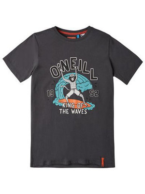 O'neill King Of Waves Ss T-Shirt Grey