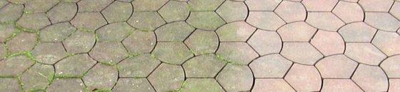 Mos- en algenverwijderaar