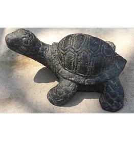 Schildkröte 25cm