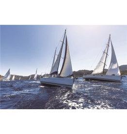 Eliassen Foto op glas schilderij Sailing 80x120cm
