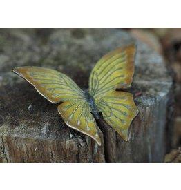 Eliassen Bronze yellow butterfly