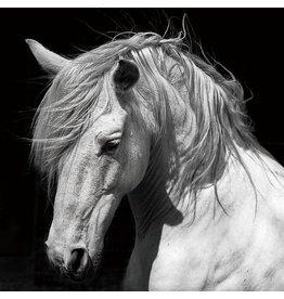 Eliassen Glass painting 120x120cm Horse