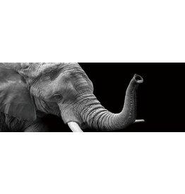 Eliassen Painting glass 60x160cm Elephant1