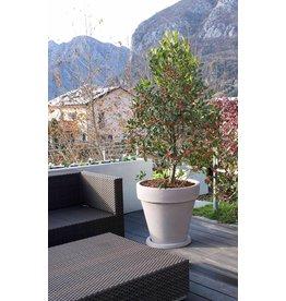 Pot Vaso Tondo 50cm in 3 kleuren