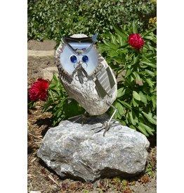 Owl Stainless Steel Professor