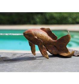 Eliassen Goldfish Bronze