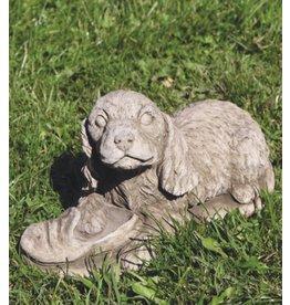Garden image dog Cocker Spaniel pu
