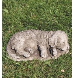 Garden image dog retriever puppy