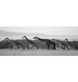 Glass painting 60x160cm Giraffes