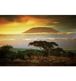 Glasmalerei 80x120cm Afrika