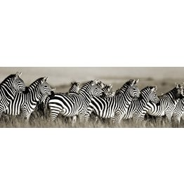 MondiArt Glass painting Group zebra's 50x150cm