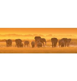 MondiArt Glass painting Group of elephants 50x150cm