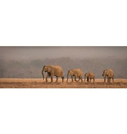 MondiArt Glass painting rectangular Elephants 50x150cm