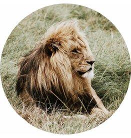 Gave Glass painting around Lion diameter 80cm