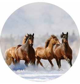 Gave Glas schilderij rond Paarden diameter 80cm
