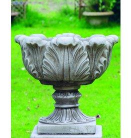 Dragonstone Pot Farn Drachenstein