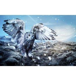 Wandkraft Wandkraft glass painting Owl 118x70cm