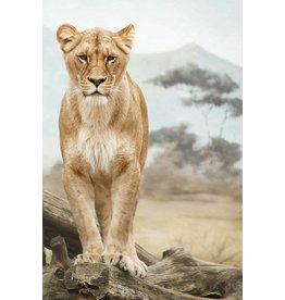 Wandkraft Wandkraft Glasmalerei Afrika 148x98cm
