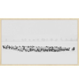 Wandkraft Painting forex Flock 118x70cm
