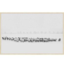 Wandkraft Malerei Forex Flock 148x98cm