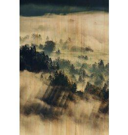 Wandkraft Malerei Birkenholz Wolken 148x98cm