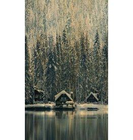 Wandkraft Malerei Birkenholz Schweden 118x70cm