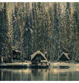 Wandkraft Schilderij berkenhout Zweden 74x74cm
