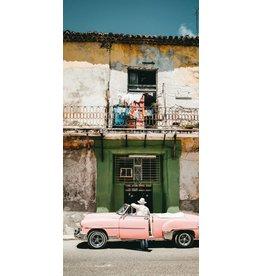 Wandkraft Painting dibond Pink 98x48cm