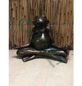 Bronze Zen frog