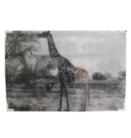 MondiArt Glasmalerei Giraffe 80x120cm