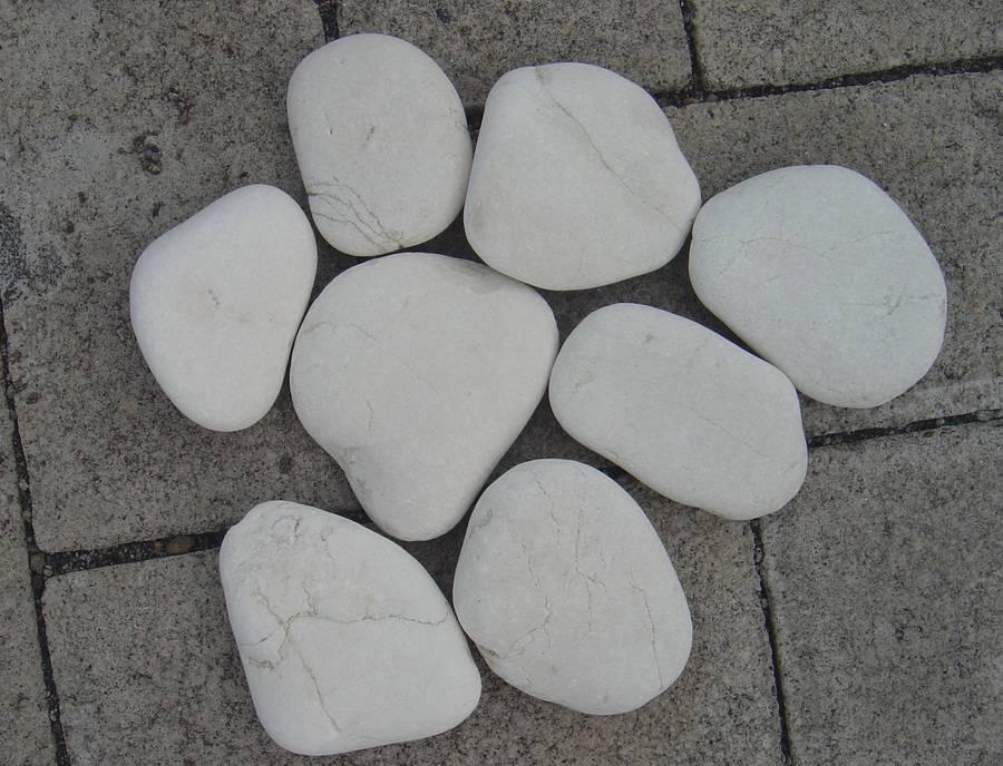 Tuin Stenen Kopen.Witte Platte Sierkeien Kopen Voor In De Tuin Verkrijgbaar In 2 Maten