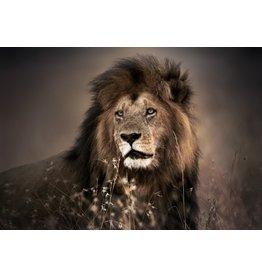 Eliassen Glass painting 110x160cm Lion