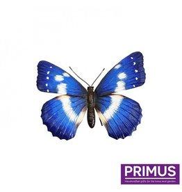 Metallischer blauer Schmetterling