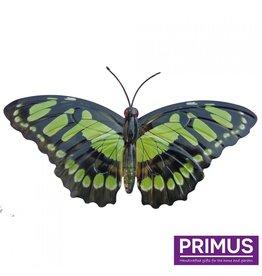 Metallischer grüner Schmetterling