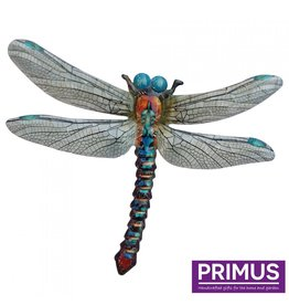 Metal dragonfly blue