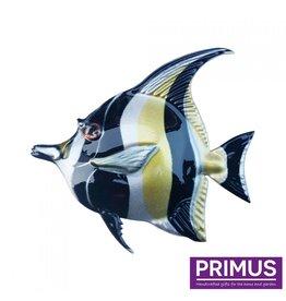 Metallschwarz-gelber Fisch