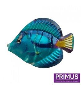 Metallischer blauer Fisch