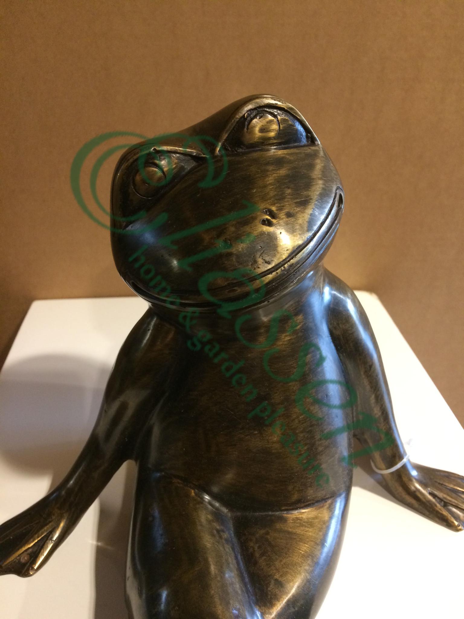 Bronzen zittende kikker