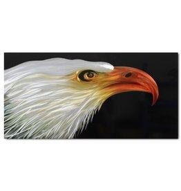 Schilderij aluminium  Vogel  60x120cm