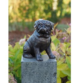 Eliassen Image bronze pug