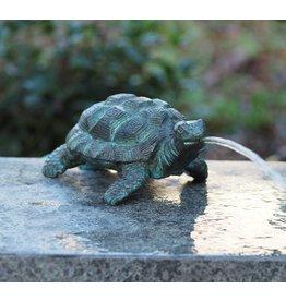 Eliassen Image bronze turtle